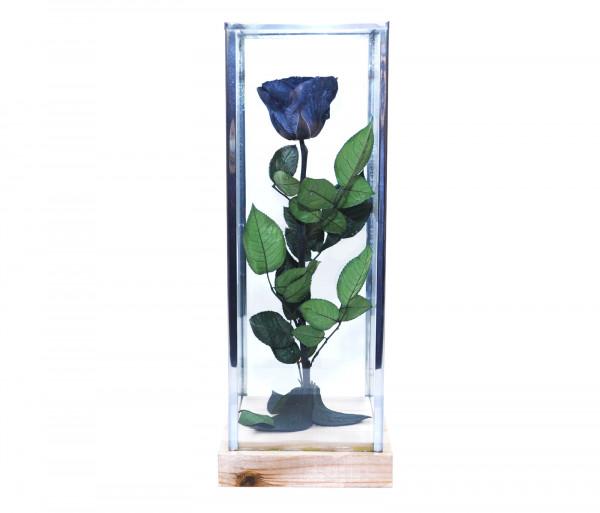 Երկարակյաց սև վարդ կոլբայով EM Flower