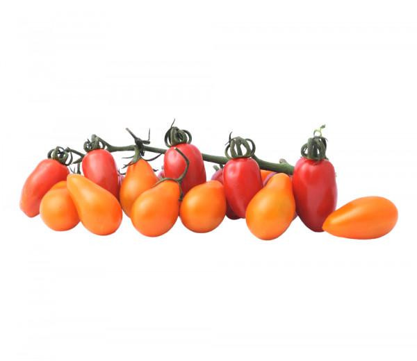 Tomato Cherry Edolini