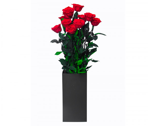 Բնական անթառամ վարդ (70սմ, 1 հատ) EM Flower