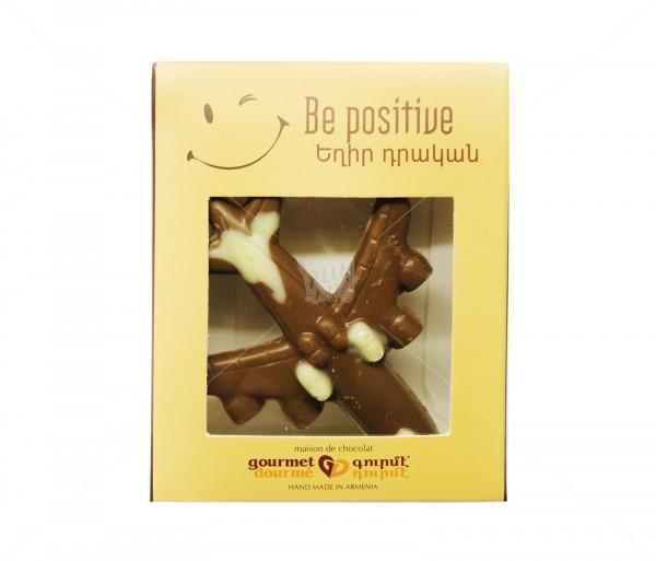 Շոկոլադե ինքնաթիռ Gourmet Dourme