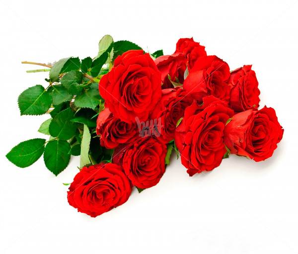 Bouquet Roses Anahit