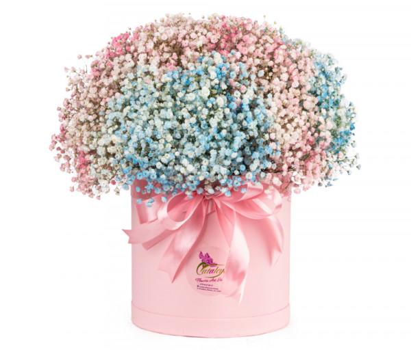 Ծաղկային կոմպոզիցիա N32 Cataleya Flowers