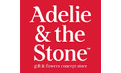 Adelie and the Stone