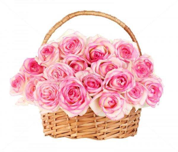 Ծաղկային կոմպոզիցիա «55 նրբերանգ վարդեր զամբյուղում» Anahit