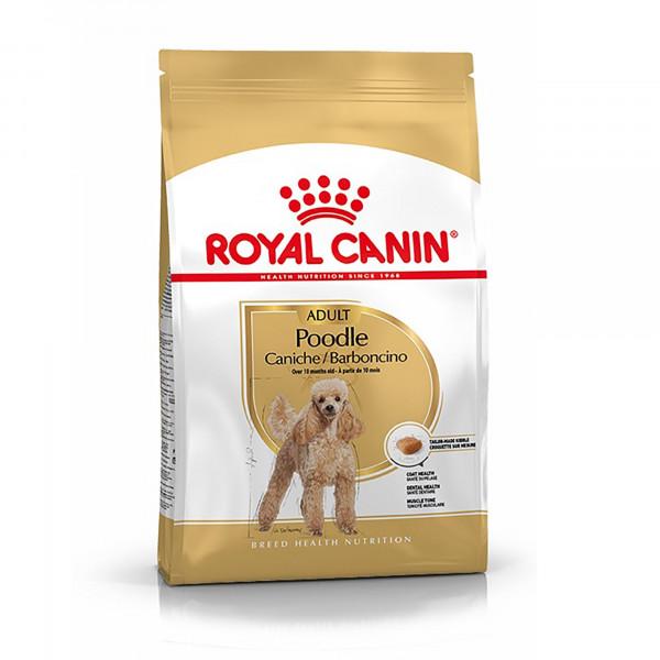 Շան չոր կեր Poodle adult 1.5 կգ