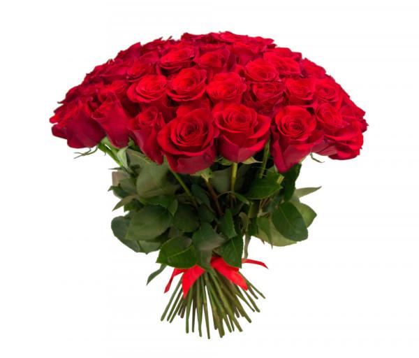 Dutch roses Red 51 pcs Coco Fiori