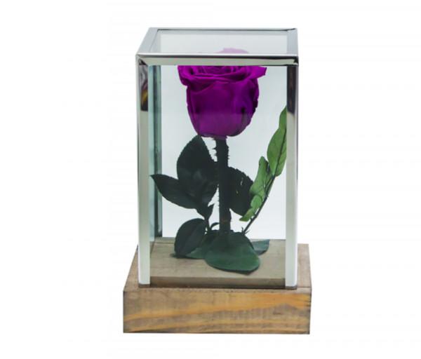 Բնական անթառամ մանուշակագույն վարդ Ուղղանկյուն (18սմ) EM Flower