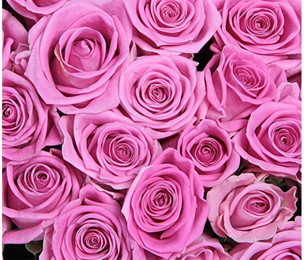 Ծաղկեփունջ «Pink Reality» 60սմ My Rose