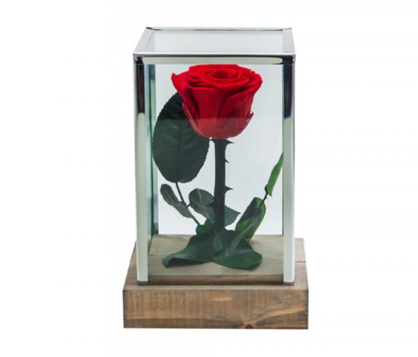 Բնական անթառամ կարմիր վարդ Ուղղանկյուն (18սմ) EM Flower