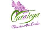 Cataleya Flowers