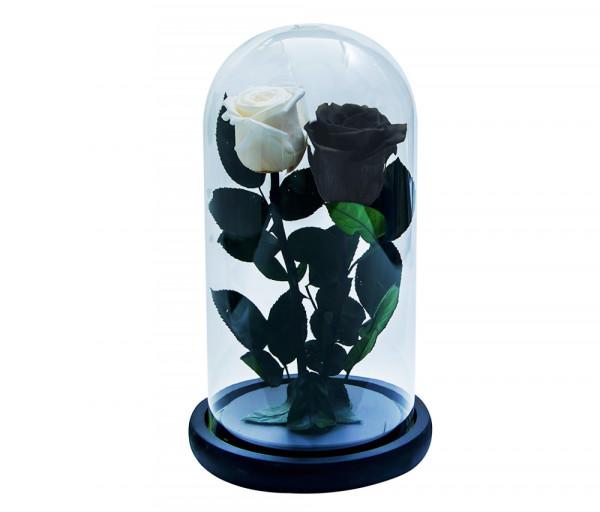 ԻՆ-ՅԱՆ Անթառամ սև և սպիտակ վարդ (27սմ) EM Flower