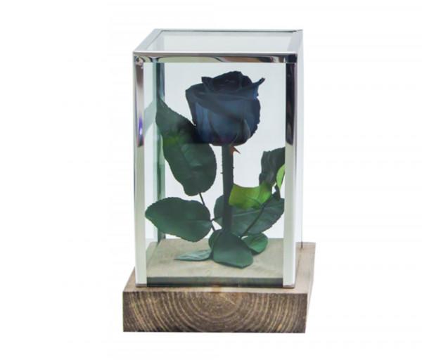 Բնական անթառամ սև վարդ Ուղղանկյուն (18սմ) EM Flower